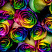 Multicolores en Tiflis.
