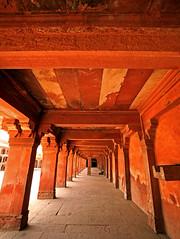 Fatehpur Sikri Palace 110 (David OMalley) Tags: india muslim islam agra palace mosque pilgrimage akbar masjid allah islamic pradesh fatehpur sikri muhammed uttar jama darwaza buland sikari vijaypur