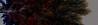 X-ray lung ...* (N0352) (Le Photiste) Tags: art wow artwork nikon ngc digitalart photographers clay soe fairplay giveme5 autofocus photomix ineffable digitalartwork prophoto friendsforever simplythebest finegold artandsoul greatphotographers lovelyshot creativeart digitalcreations processedphoto artyimpression beautifulcapture damncoolphotographers myfriendspictures artisticimpressions simplysuperb thebestshot digifotopro afeastformyeyes artforfun simplybecause iqimagequality yourbestoftoday artofimages saariysqualitypictures hairygitselite worldofdetails lovelyflickr vividstriking universalart blinkagain digitalartfx2 theredgroup kreativepeople photographicworld aphotographersview thepitstopshop thelooklevel1red showcaseimages mastersofcreativephotography creativeimpuls vigilantphotographersunitelevel1 cazadoresdeimágenes momentsinyourlife livingwithmultiplesclerosisms infinitexposure django'smaster bestpeople'schoice nikoncoolpixs9900 planetearthart xraylung