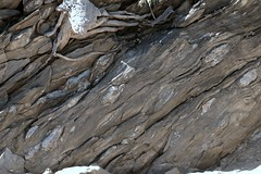 Daniel Creek Formation, Bull Creek, Robin Hood Stn IMG_8063 (ianw1951) Tags: australia georgetown queensland schist boudinage proterozoic etheridgeprovince