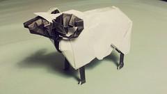 Sheep (Satoshi Kamiya) (M.Novio) Tags: white black paper mammal origami sheep diagram instructions folding kami satoshikamiya supercomplex