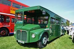RML2284 CUV284C (PD3.) Tags: uk england bus london buses festival truck transport hampshire lorry trucks routemaster basingstoke lorries aec cuv hants rml 2284 thorneycroft cuv284c rml2284 284c