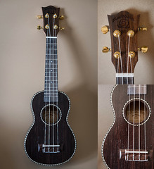At my pace (Keith Williamson) Tags: ukulele snail aquila rosewood