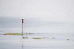 (Adrin Nieto Rodrguez) Tags: blue orange verde green water sign azul agua alone calm laguna signal naranja calma seal carballo bergantios baldaio