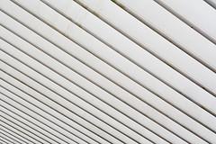 White lines (Jan van der Wolf) Tags: white abstract monochrome lines station architecture composition pattern repetition wit liege luik tgv architectuur lijnen patroon monochroom compositie herhaling guillemins ligeguillemins map1546v