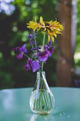 Simple Flowers (MikeBrowne) Tags: flowers vase glass lightroom depthoffield fujifilmxt1 fujinon 35mm