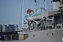 """HMAS Castlemaine (J244) 88 • <a style=""""font-size:0.8em;"""" href=""""http://www.flickr.com/photos/81723459@N04/27458679646/"""" target=""""_blank"""">View on Flickr</a>"""