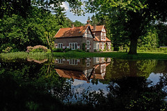 Heeze - Kasteeltuinen (grotevriendelijkereus) Tags: park holland netherlands garden nederland tuin brabant noord heeze
