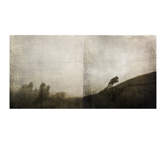 """For the air is thin and fine up there, and they sucks it in"" (mark kinrade) Tags: manxlandscape valley glen mist tebrown diptych uplands painterly farm"