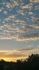 #nubes #cielo #colores #valladolid  #verano #2016 #paisaje #tranquilidad  #silencio #anochecer #DiayNoche (A golpe de mirada) Tags: paisaje colores valladolid cielo nubes verano silencio anochecer tranquilidad 2016 diaynoche