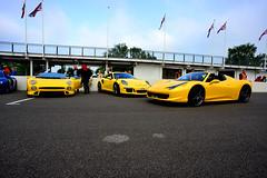 JAGUAR XJ220S TWR & PORSCHE 911 GT3 RS & (dale hartrick) Tags: porsche911gt3rs porsche911 gt3rs porsche 911 gt3 rs jaguarxj220 jaguarxj220s jaguar xj220 xj220s supercar goodwood breakfast goodwoodbreakfastclub fullthrottle endlesspursuitofpower supercars nikond800 nikon automotive
