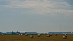 Farm Scene (ramseybuckeye) Tags: round bales straw farm farming wheat field barn van wert county ohio pentax art life agriculture rural hay
