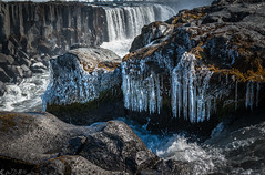 Phases (Bill Bowman) Tags: jkulsfjllumriver selfoss waterfall icicles iceland sland