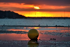 The Buoy (Tilney Gardner) Tags: sunset colours sandbanks poole dorset harbour buoyant