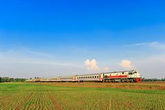 Senja Kereta Api Serayu (Fahmi Wijaya) Tags: keretaapi lokomotif indonesia blue sawah wonderfull
