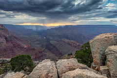 Distant Rain (Kirk Lougheed) Tags: arizona grandcanyon grandcanyonnationalpark lipanpoint southrim usa unitedstates canyon cloud evening landscape nationalpark outdoor rain rainshower rim sky storm summer sunset