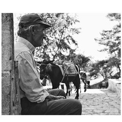 Patiently waiting for the next customer...the man too! #donkey #instadaily #rhodes #temple #man #holiday #athena #blackandwhite (james hart photography) Tags: instagramapp square squareformat iphoneography uploaded:by=instagram rhodes man donkey blackandwhite