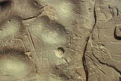 Djado Arkana (ursulazrich) Tags: man sahara niger painting rhinoceros rockart petroglyphs arkana cupule gravuren djado enneri blaka domo lowegrindingstone