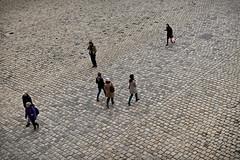 Sur l'chiquier des Invalides (Paolo Pizzimenti) Tags: paris film paolo louvre olympus invalides f18 amis rue miracles vue zuiko amie gens omd 25mm em1 pellicule m43 femmehomme
