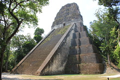 Tikal, Temple V (Arian Zwegers) Tags: city heritage architecture stairs temple site nationalpark rainforest ruins shrine pyramid mask maya guatemala teotihuacan capital steps platform kingdom structure stairway unesco worldheritagesite masks tikal temples pyramids monuments base unescoworldheritage tombs palaces levels precolumbian rulers worldheritage chac mouldings balustrades lowland 2014 worldheritagelist archaeologicalsite urbancenter roofcomb ancientcity raingod roundedcorners templev chaac unescoworldheritagelist mayanpyramid mayapyramid tikalnationalpark lateclassic earlyclassic elpetn classicperiod mayacivilization monumentalarchitecture ancientmaya mesoamericanpyramid petnbasin steppedlevels lowlandmaya mortuarypyramid conqueststate