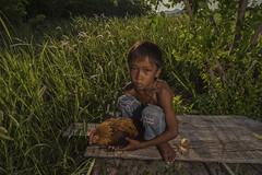 20140504-MIA_8307 (yaman ibrahim) Tags: morning boy sunrise kid malaysia rooster sabahan maiga