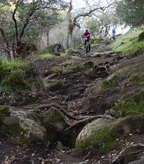 On Cascade Trail