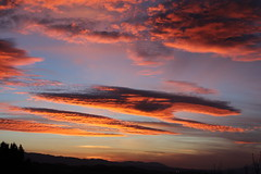 Happy Thanksgiving! (Alexandra Rudge. Love and peace to all!!!) Tags: california eve sunset sky naturaleza sun mountains sol nature colors canon landscape atardecer evening twilight montana
