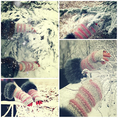 warm mitts collage-petssign01 (-Natalis-) Tags: christmas pink winter snow wool creativity frost  petslair