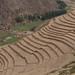 Terracos de agricultura e contencao de erosao