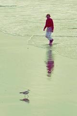 Encounter (katushang) Tags: sea holland color beach netherlands daylight leiden nikon colorful europe northsea nikkor dslr 2012 noordwijk dx 105mm nordzee nordholland d5100 summer2012 nikond5100
