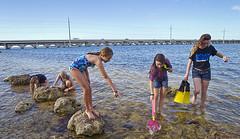 girls beachcombing (bpkfishinglodge) Tags: camping fishing florida boating rv floridakeys bigpinekey bigpinekeyfishinglodge bpkfl