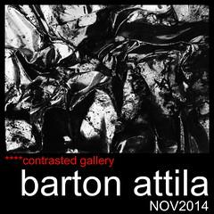 today at ****contrasted gallery : BARTON ATTILA!!! (annalisa ceolin) Tags: manuel manueldiumenj bartonattila contrastedgalery