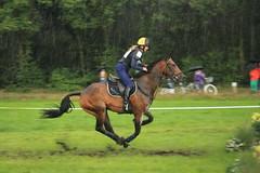 Outdoor Helvoirt (Rens Bressers) Tags: horse holland netherlands sport nederland thenetherlands tournament brabant noordbrabant helvoirt