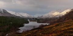 First Light (Highlandscape) Tags: winter light snow weather pine sunrise scotland highlands glenaffric scots riveraffric lochaffric