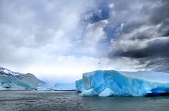 792 Glacier Upsala, baie d'Onelli - Blue Planet pour Jean (Docaron) Tags: argentina argentine glacier iceberg patagonie glaciar lagoargentino upsala elcalafate blueplanet onelli parquenacionallosglaciares cordillèredesandes santacruzdistrict andespatagónicos lacargentino patagónicosur dominiquecaron