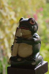 Frog Greeter (Chris O'Brien - Ellipsis-Imagery) Tags: trip 6 orlando florida iso400 flute frog 90mm f5 2014 120sec canoneos40d chrisopics live360 ellipsisimagery