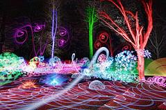 woods (Capt_Sensible) Tags: light lightpainting painting lp lightpainters