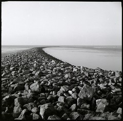 North Sea Coast (thognu) Tags: bw 120 6x6 film monochrome square landscape northsea tmax400 nordsee voigtlnder xtol perkeo dithmarschen