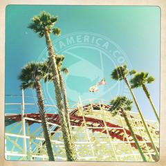 CALIFORNIA-486