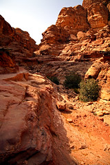 Path to the Monastery 31 (David OMalley) Tags: world city heritage rose rock stone site desert path petra siq carving unesco east jordan monastery arab middle carvings jordanian monumental jebel nabatean nabateans hewn maan almadhbah