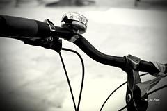 MANILLAR (M. del Pilar) Tags: blancoynegro bicicleta timbre monocromtico manillar