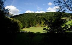 _DSC2196 (adrizufe) Tags: green nature landscape ilovenature nikon ngc bizkaia basquecountry springtime lovelyday atxondo durangaldea nikonstunninggallery aplusphoto d7000 adrizufe adrianzubia