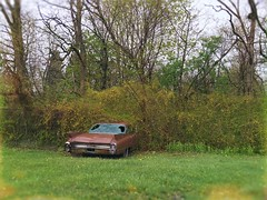 Resting Place (BLACK EYED SUZY) Tags: auto old abandoned broken car vintage spring rust retro forsythia tadaa afterlight