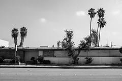 Long Building (bhop) Tags: california street blackandwhite bw building monochrome los fuji angeles trix fujifilm pasadena digitalbw across x100 vsco x100t