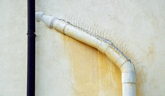 Passeggiando sulle Mura Medicee - Walking over the Medicean Walls (Jambo Jambo) Tags: italy italia tuscany toscana grosseto maremma muramedicee maremmatoscana nikond5000 jambojambo mediceanwalls