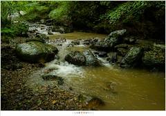 Walking along the Ninglinspo (nandOOnline) Tags: water rain beek ardennen natuur nat m bos regen modder landschap waterval rivier ninglinspo bergrivier stroomversnelling bergbeek