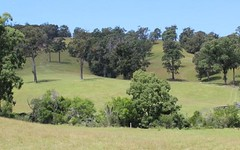 Lots 248 249 152 153 Reedy Creek Road, Dignams Creek NSW