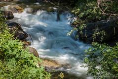 Agua con prisas (SantiMB.Photos) Tags: summer espaa ro river geotagged verano esp cerdanya lleida cataluna martinet llosa 2tumblr sal18250 2blogger geo:lat=4236211934 geo:lon=169588566