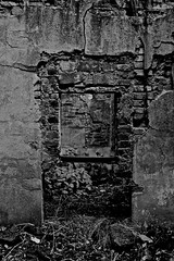 Wallfahrt (Glaneuse) Tags: old trees building brick abandoned window wall forest blackwhite ruins decay frame remains decaying