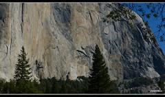 El Capitan -Yosemite National Park (Contrails) Tags: california trees usa mountains nature sunshine landscape nationalpark nps bluesky sierra yosemite wilderness elcapitan sierranevada yosemitevalley elcap rockformation granitemonolith rangeoflight